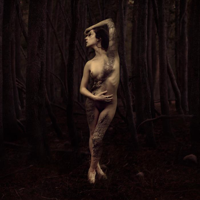 Brooke Shaden - How The Forest Grows